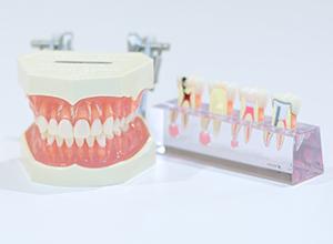 """歯周病治療"""""""